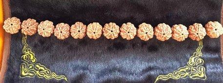 5瓣22-23mm 极品双龙纹 肉满 仅此一串
